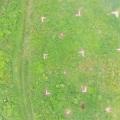 Referenzpunkte aus der Luft